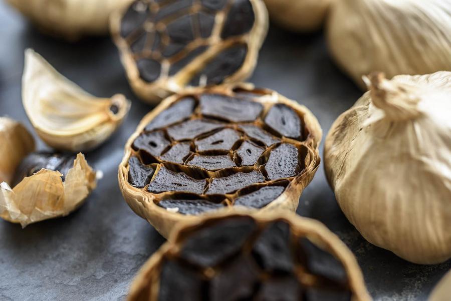 homepage garlic